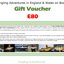 eBay Gift Voucher £080 - Nov 2017